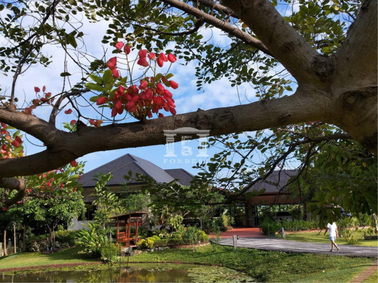 Forbest Properties Agency's 40604 - Land and house for sale in Pak Chong. Soi Charoen Sap, Plot size 4 rai. 2