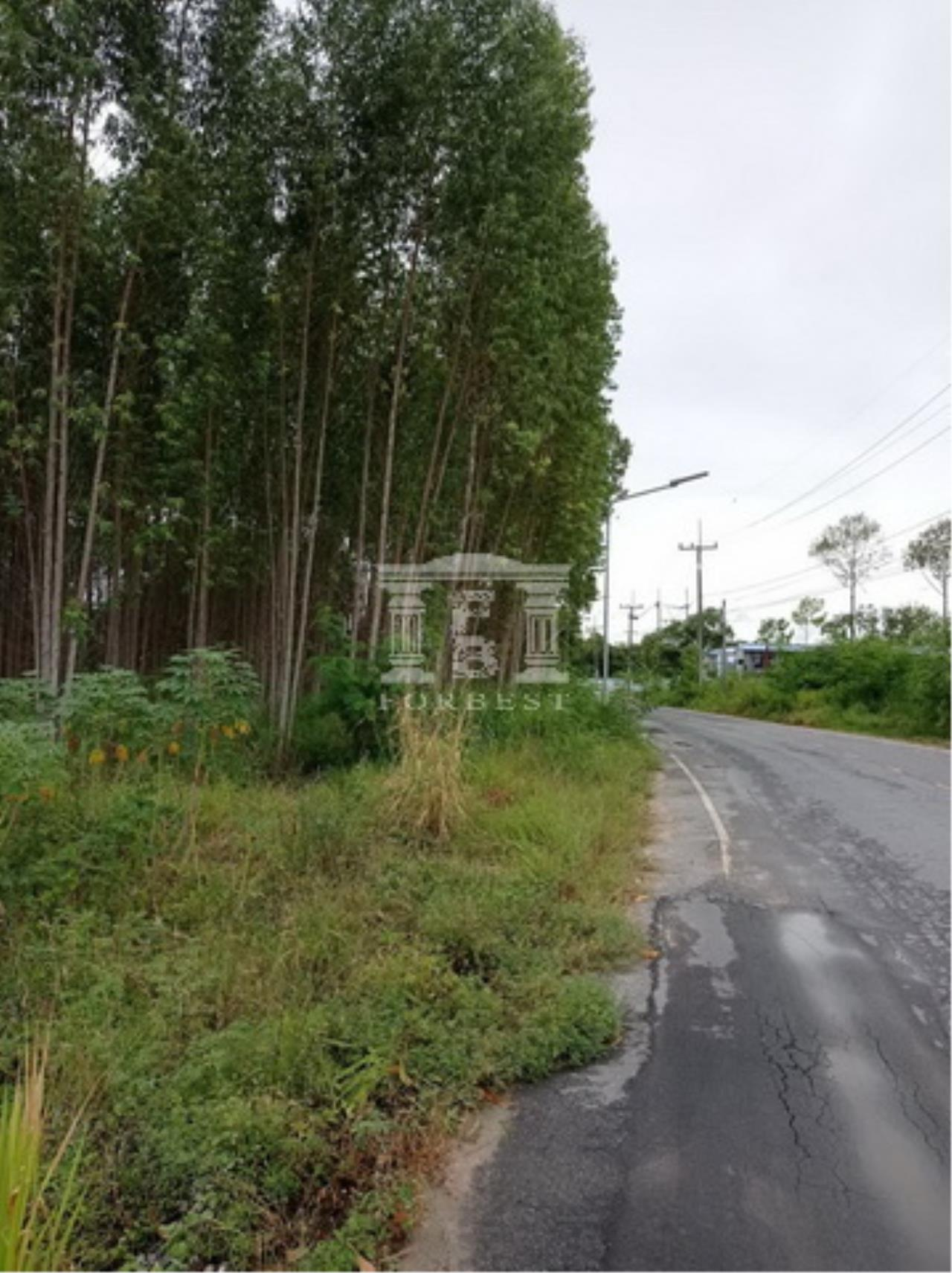 Forbest Properties Agency's 90180 - Land for sale, Plot size 60-1-78.8 Rai, Ban Chang, Rayong, near Map Ta Phut Industrial Estate. 3