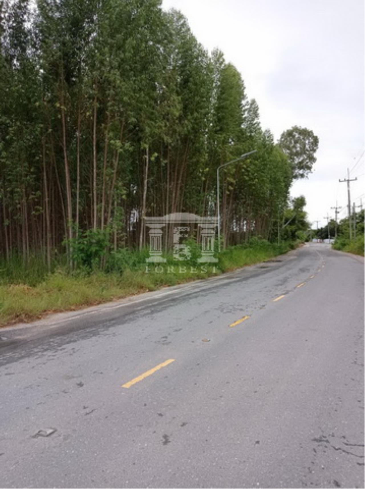Forbest Properties Agency's 90180 - Land for sale, Plot size 60-1-78.8 Rai, Ban Chang, Rayong, near Map Ta Phut Industrial Estate. 4