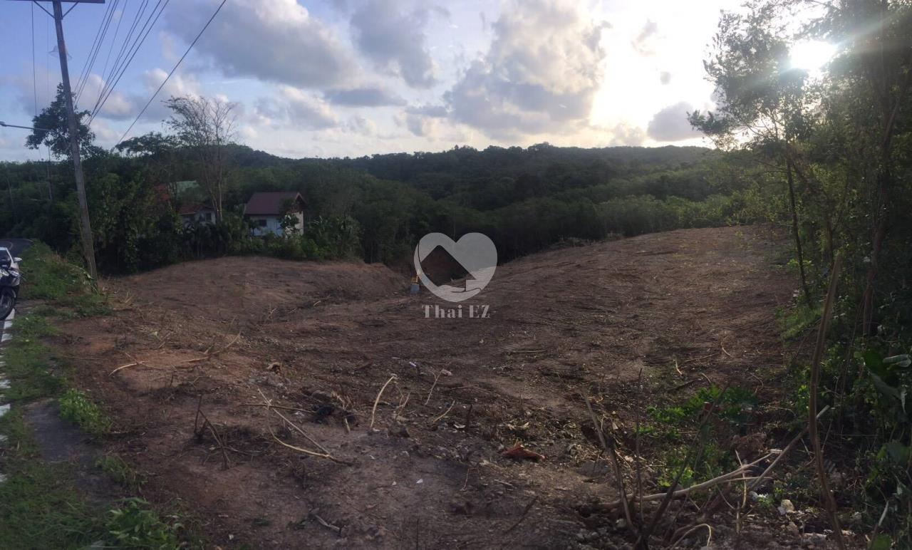 Thai EZ Agency's Land for Sale Phuket 4