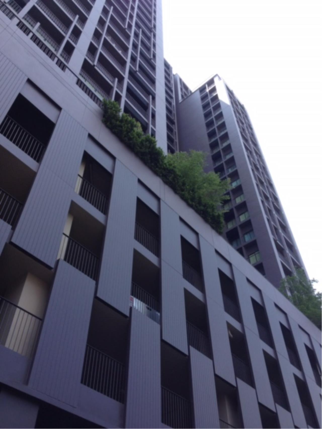 Century21 Skylux Agency's Noble Reveal / Condo For Rent / 1 Bedroom / 52 SQM / BTS Ekkamai / Bangkok 8
