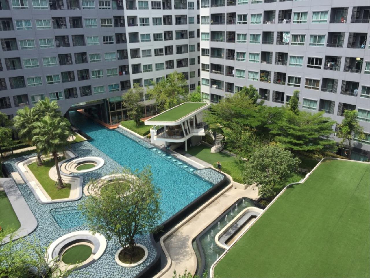 Century21 Skylux Agency's Elio Del Ray / Condo For Sale / 1 Bedroom / 34.5 SQM / BTS Punnawithi / Bangkok 5