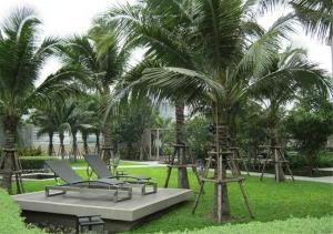 Bangkok Residential Agency's 2 Bed Condo For Rent Near Riverside BR2777CD 8