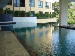 BKK Condos Agency's 2 bedroom condo for sale with tenant at The Sense Sukhumvit 68 10