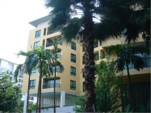 BKK Condos Agency's 2 bedroom condo for sale with tenant at The Sense Sukhumvit 68 13