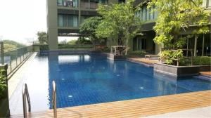 BKK Condos Agency's 1 bedroom condo for rent at Noble Solo 5