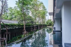 BKK Condos Agency's 2 bedroom condo for rent at Via 31 8