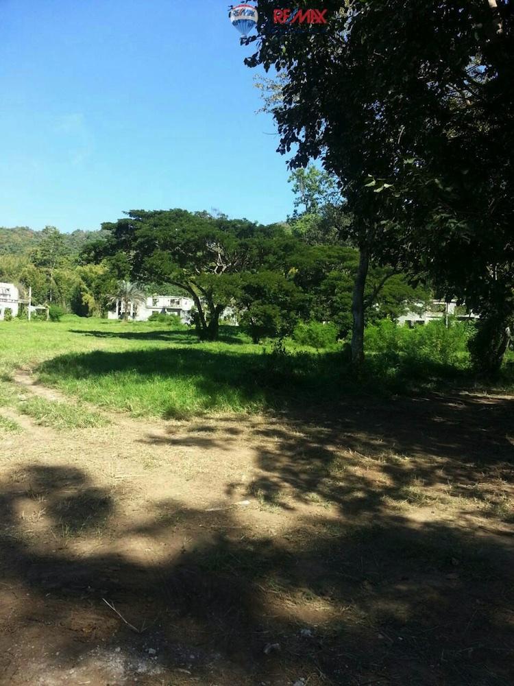 RE/MAX Skyline Agency's Land for Sale 13 Rais at Ban Pong, Samoeng Chiang Mai 11