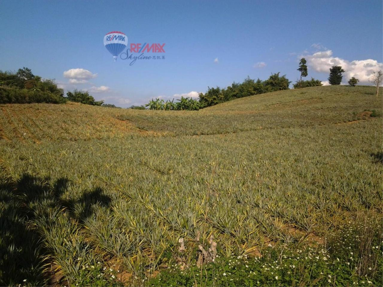 RE/MAX Skyline Agency's Land for sale 2