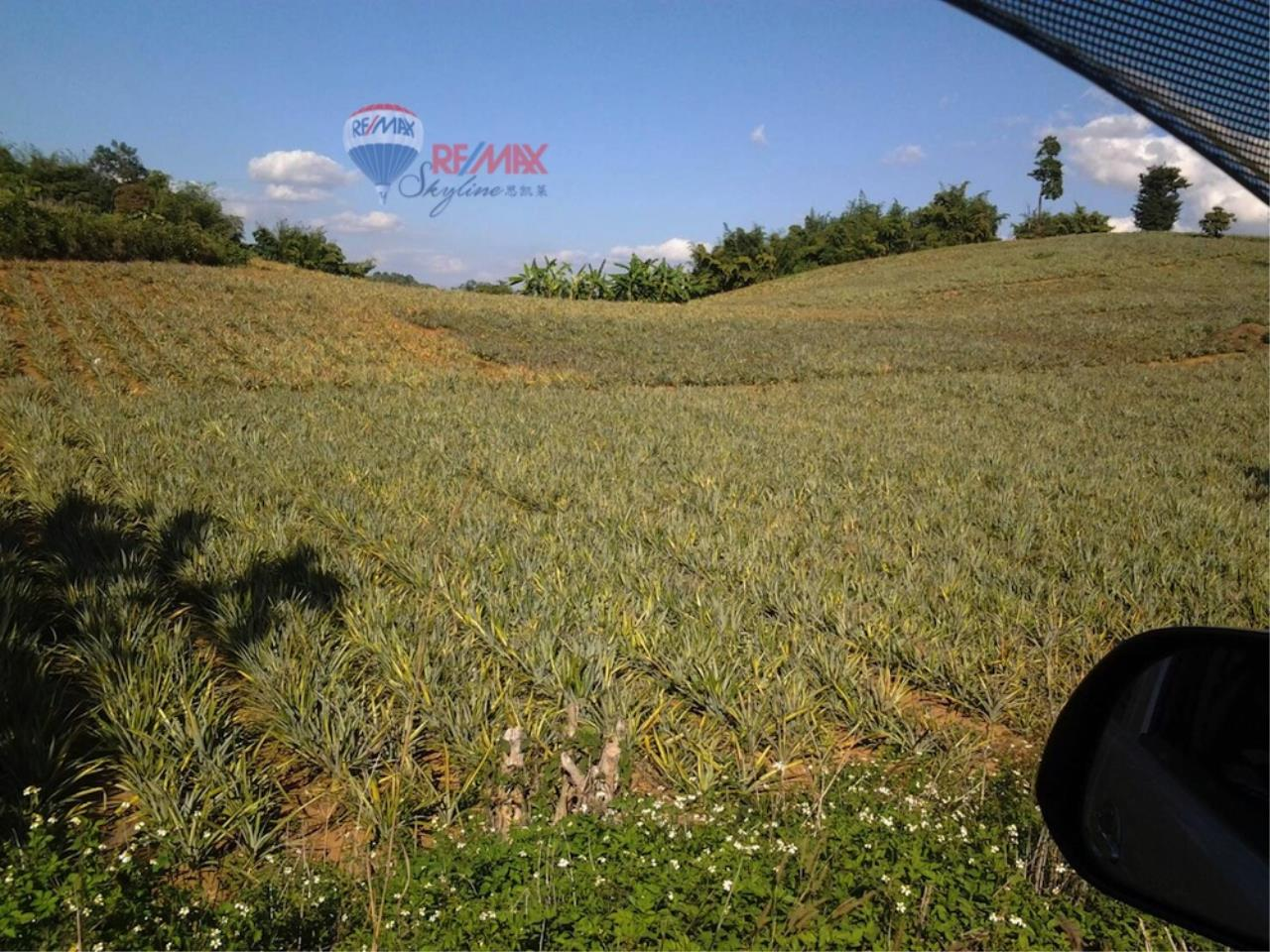 RE/MAX Skyline Agency's Land for sale 3