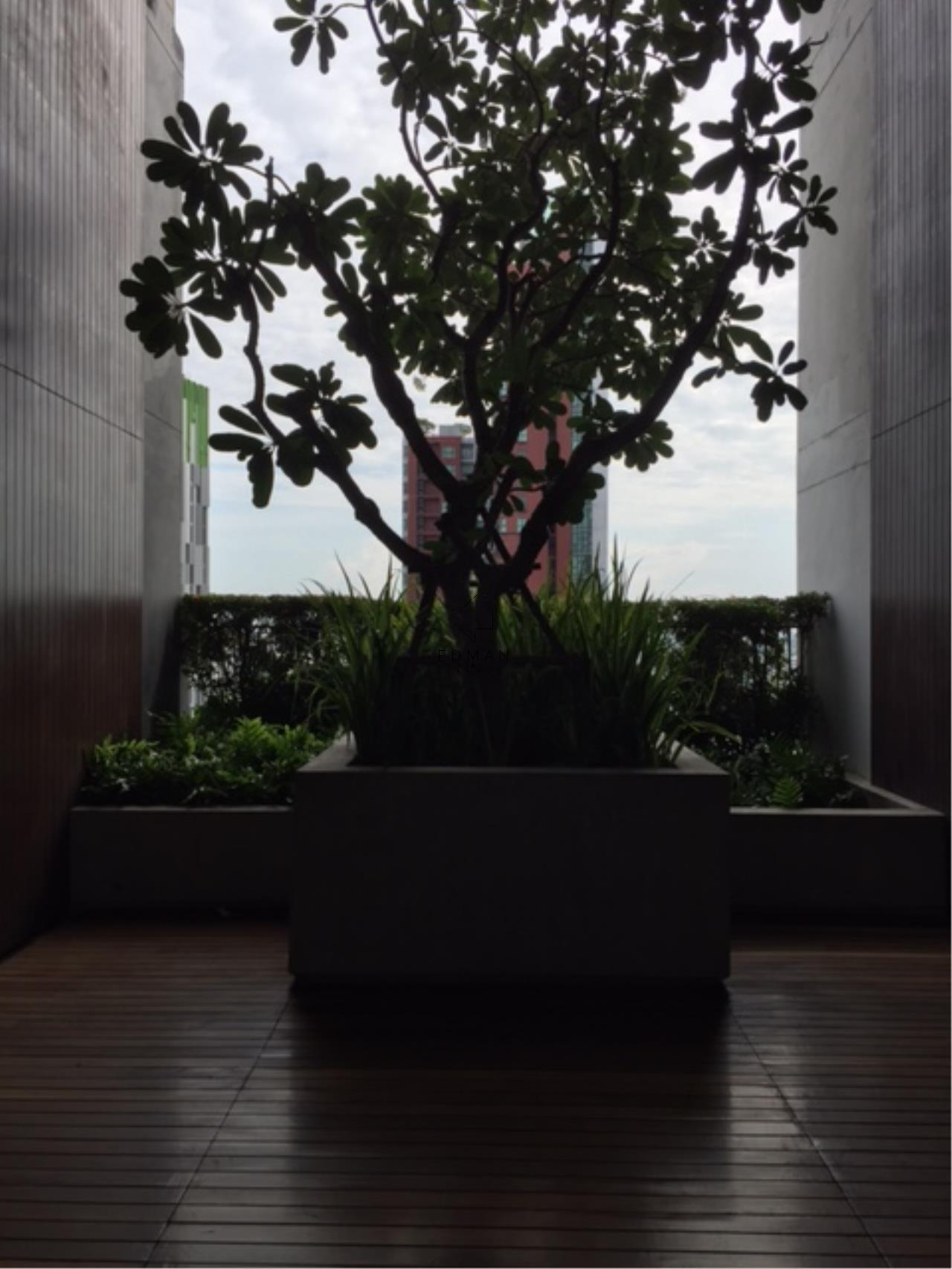 Edman and Partners Co.,Ltd Agency's The Bloom 1 BR For sale 11