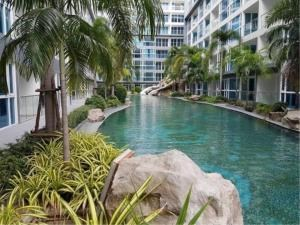 RE/MAX Town & Country Property Agency's Brand new condo for sale 11