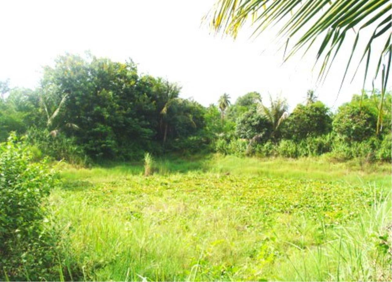 RE/MAX Town & Country Property Agency's Land for sale in East Pattaya 1