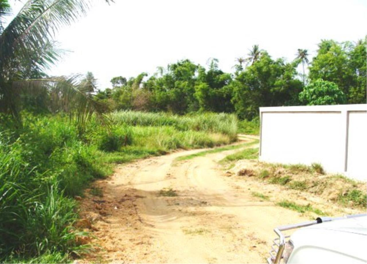 RE/MAX Town & Country Property Agency's Land for sale in East Pattaya 5