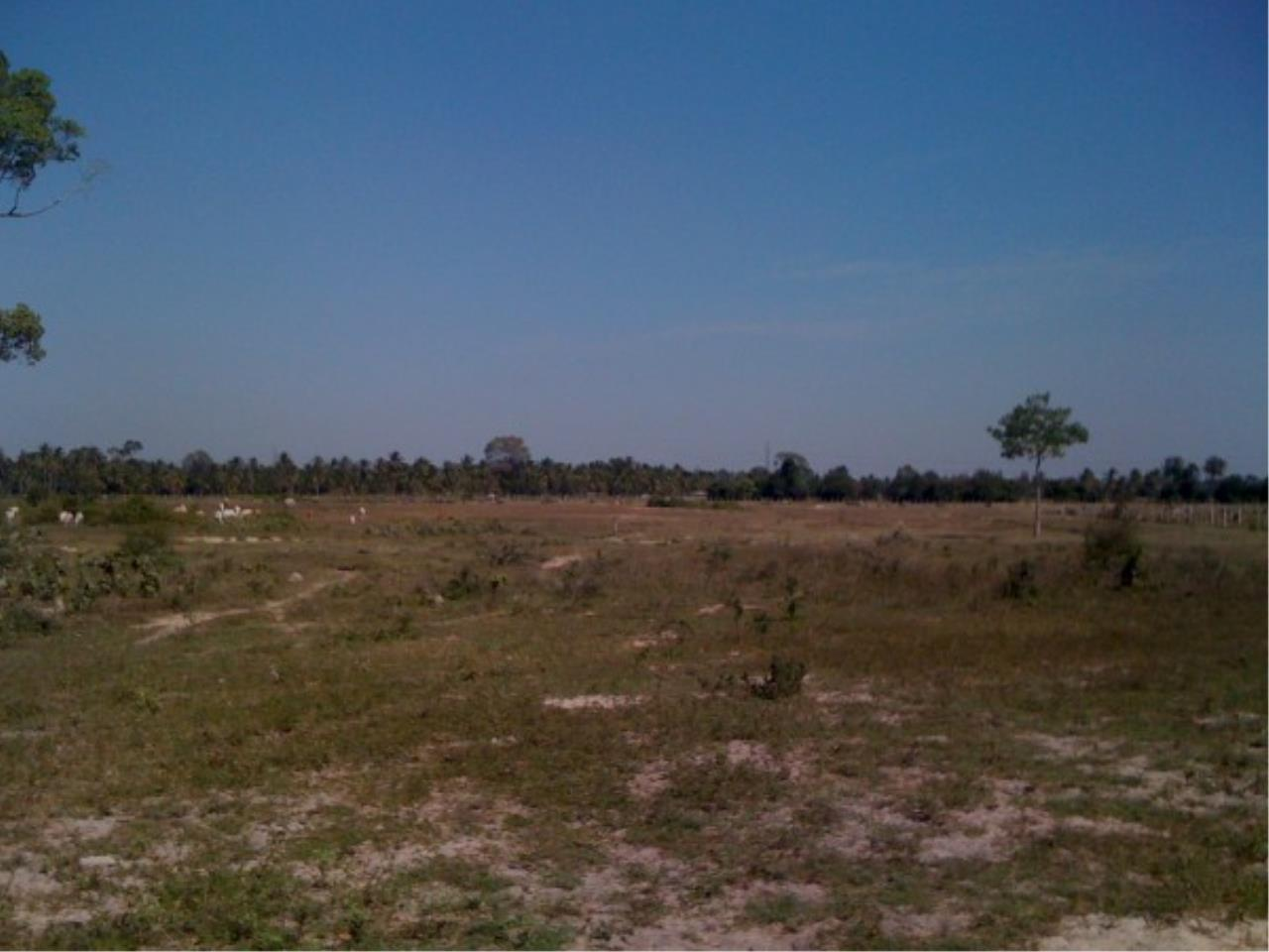RE/MAX Town & Country Property Agency's Land close to Laem Chabang Port 1