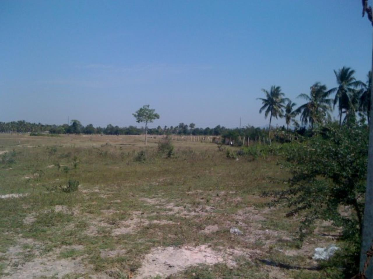 RE/MAX Town & Country Property Agency's Land close to Laem Chabang Port 2