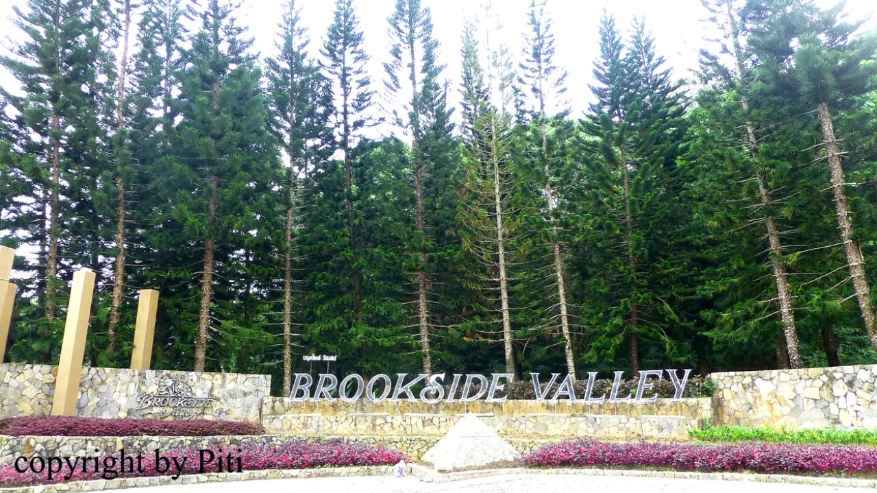Property Thai Sale Agency's Brookside Valley - Rayong 76