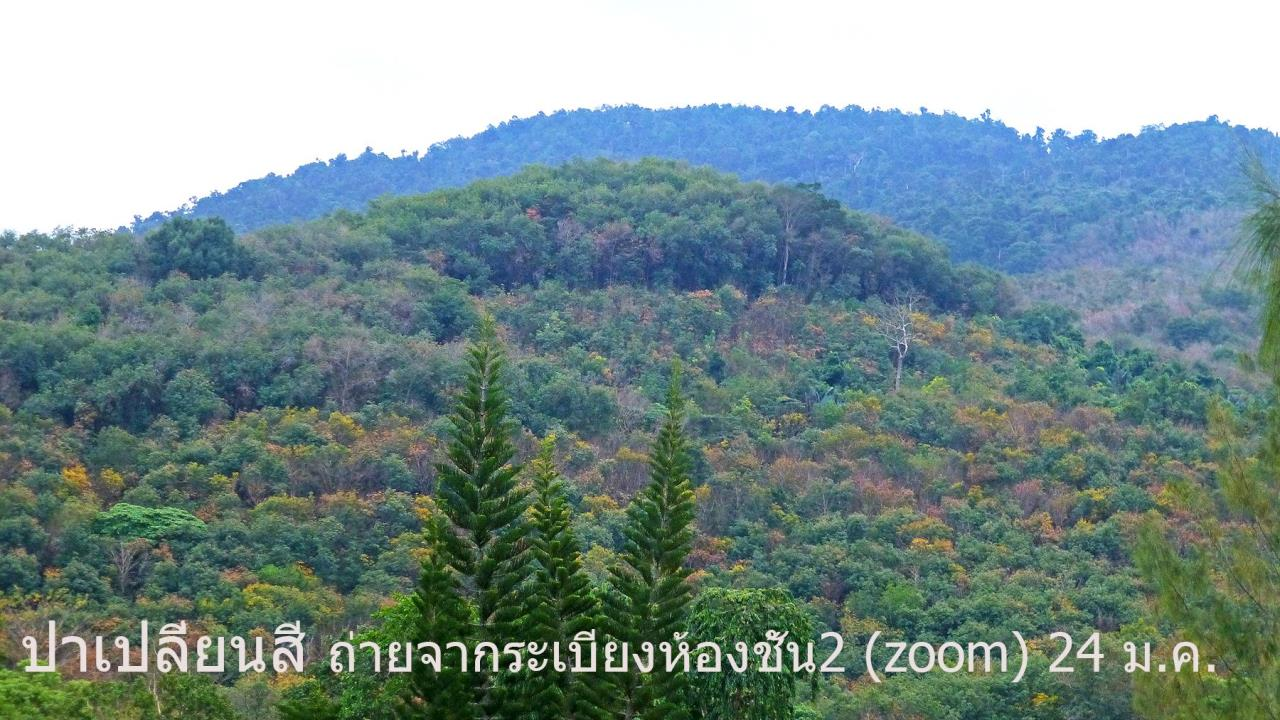 Property Thai Sale Agency's Brookside Valley - Rayong 87