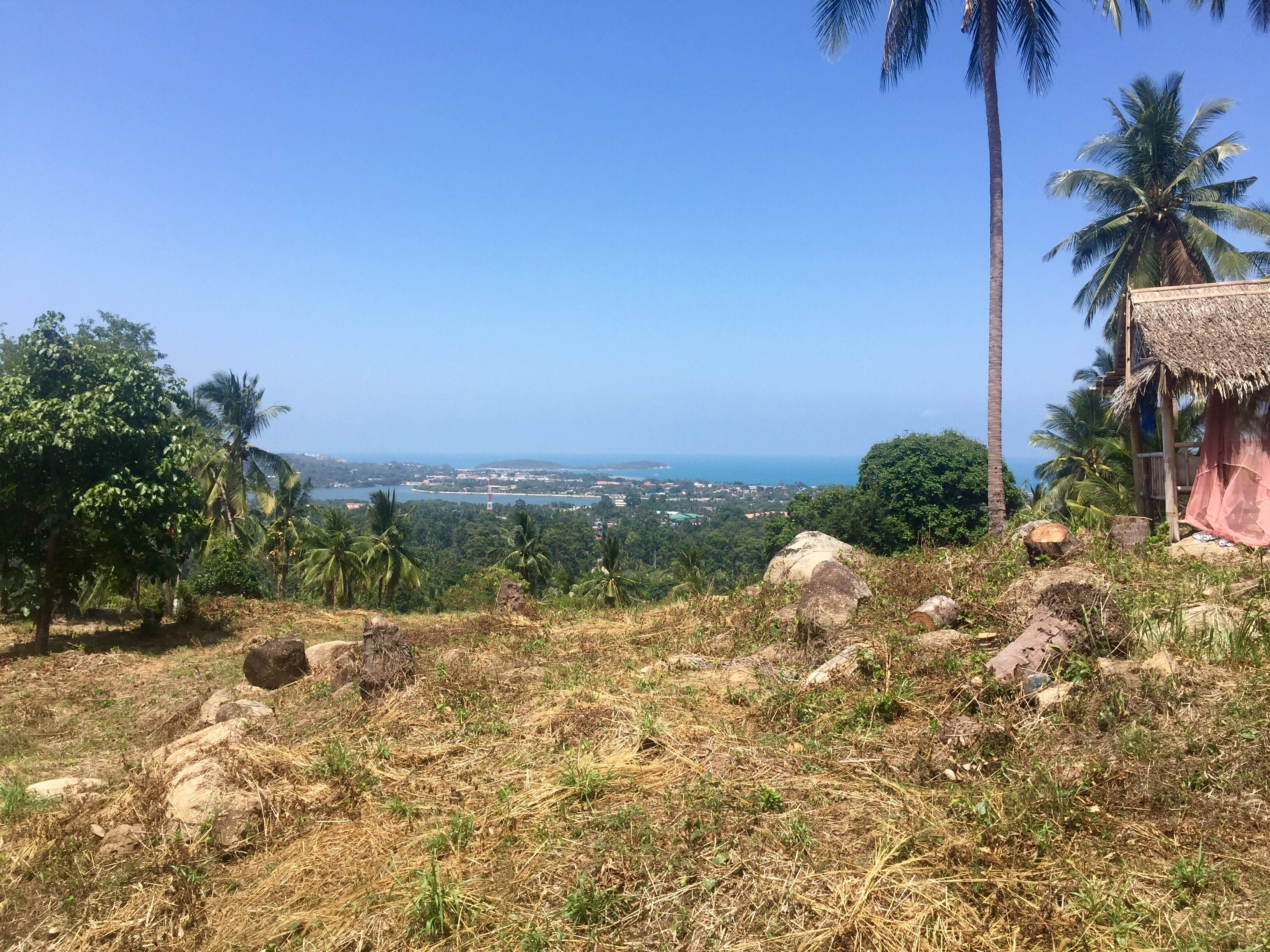 RE/MAX Island Real Estate Agency's Amazing seaview plots for sale on chaweng hill 3