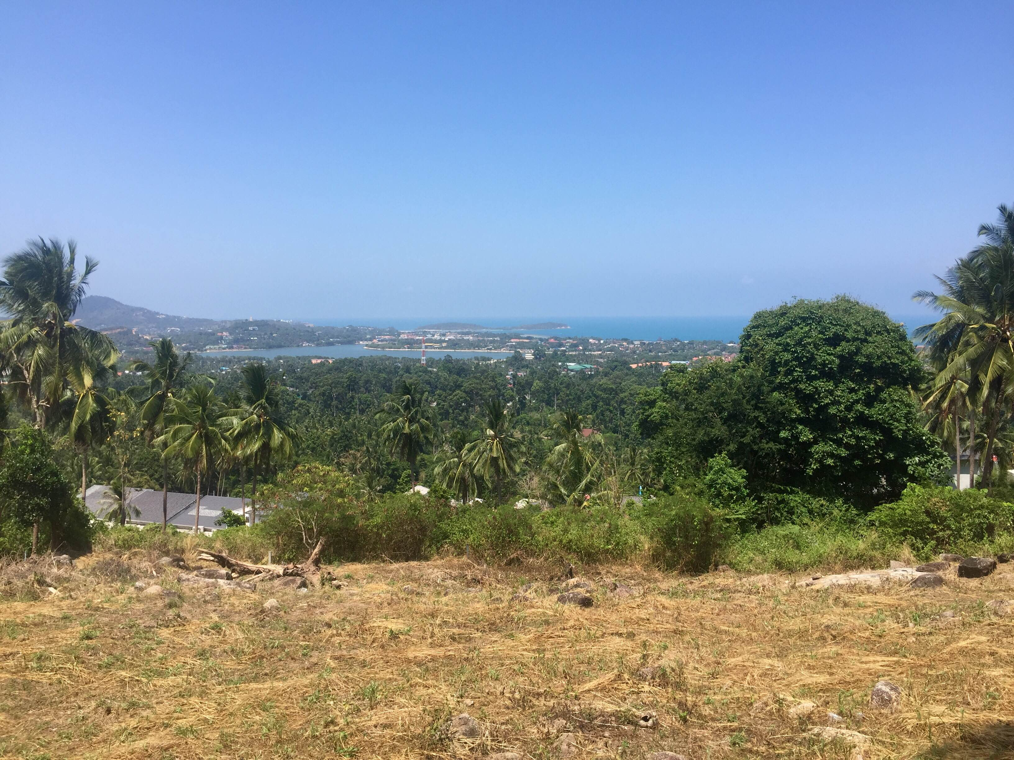 RE/MAX Island Real Estate Agency's Amazing seaview plots for sale on chaweng hill 4