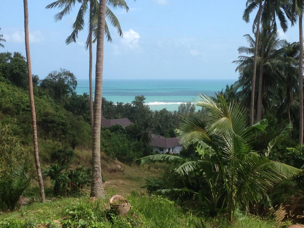 RE/MAX Island Real Estate Agency's Exclusive villa for sale in Lamai 7