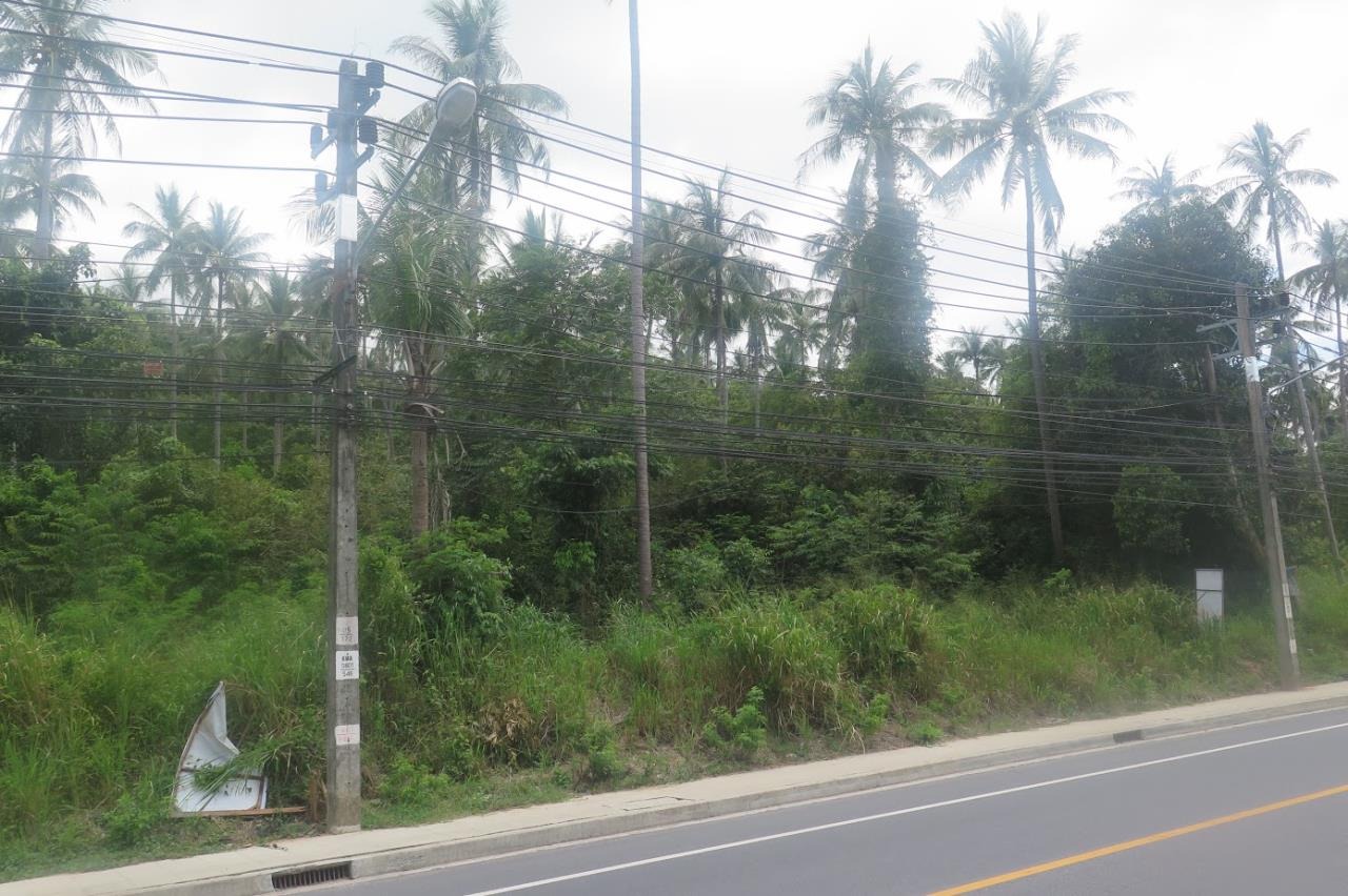 RE/MAX Island Real Estate Agency's Land for sale in Bang Por 3