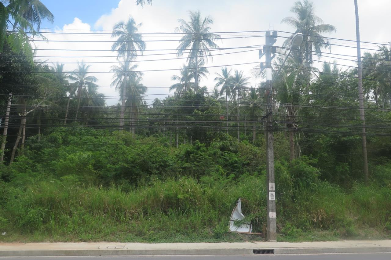 RE/MAX Island Real Estate Agency's Land for sale in Bang Por 5