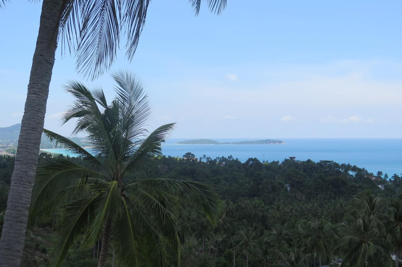 RE/MAX Island Real Estate Agency's Chaweng Sea View Land. Perfect for your private villa.  4