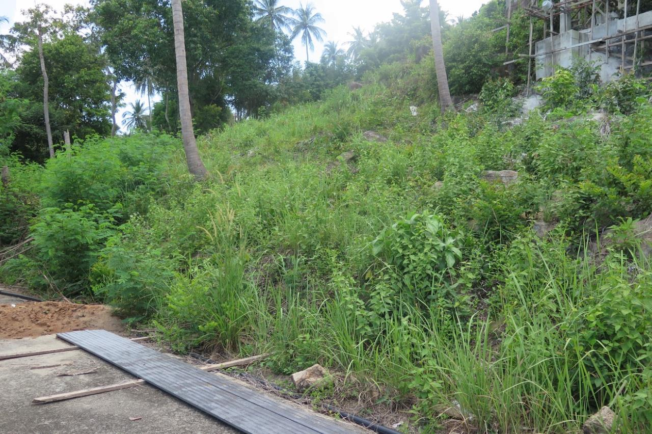 RE/MAX Island Real Estate Agency's Chaweng Sea View Land. Perfect for your private villa.  3