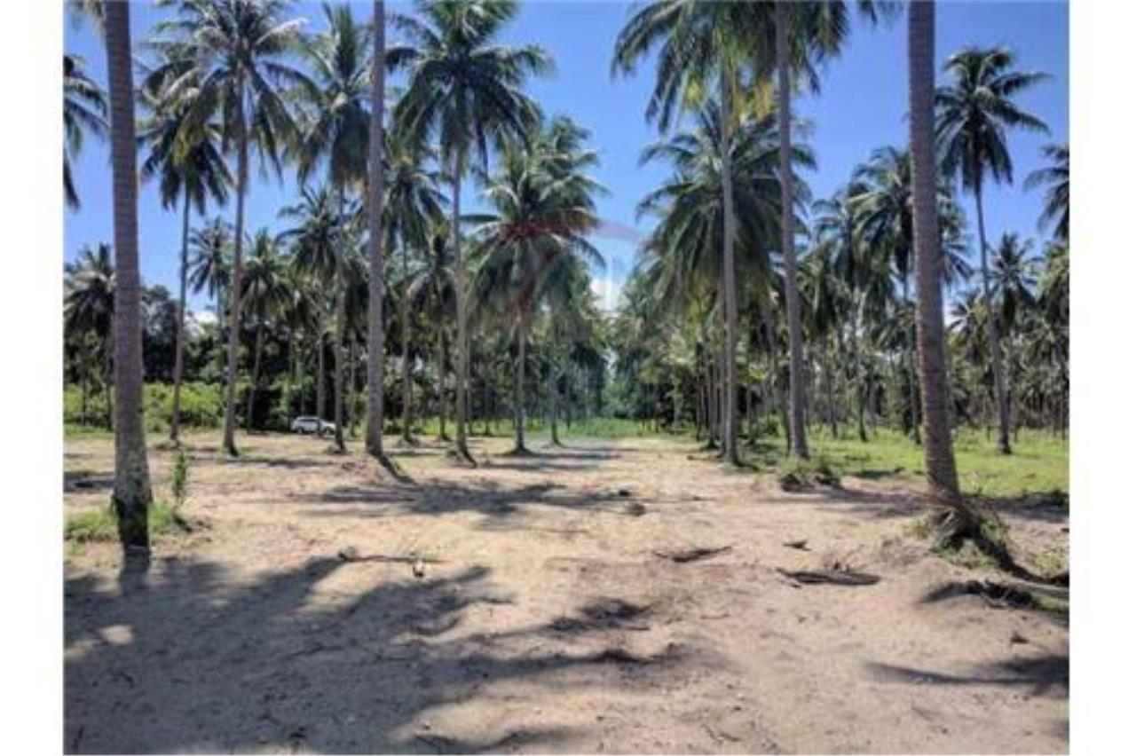 RE/MAX Island Real Estate Agency's Affordable Beachfront Land. Great location! 2