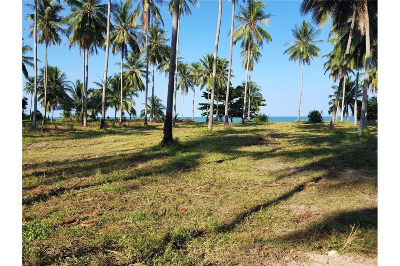 RE/MAX Island Real Estate Agency's Affordable beach land for sale in Tha Sala. 6