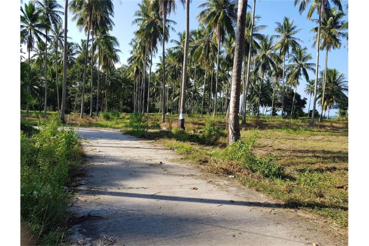 RE/MAX Island Real Estate Agency's Affordable beach land for sale in Tha Sala. 12