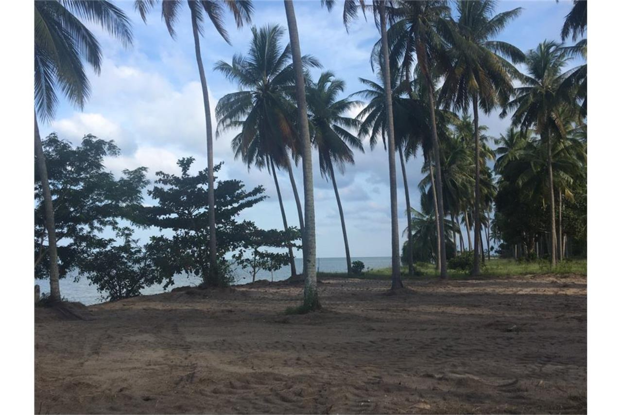 RE/MAX Island Real Estate Agency's Affordable beach land for sale in Tha Sala. 7