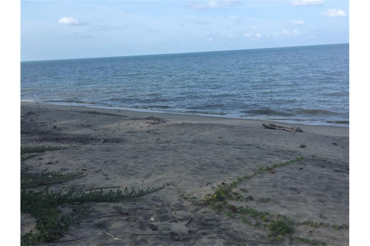 RE/MAX Island Real Estate Agency's Affordable beach land for sale in Tha Sala. 3