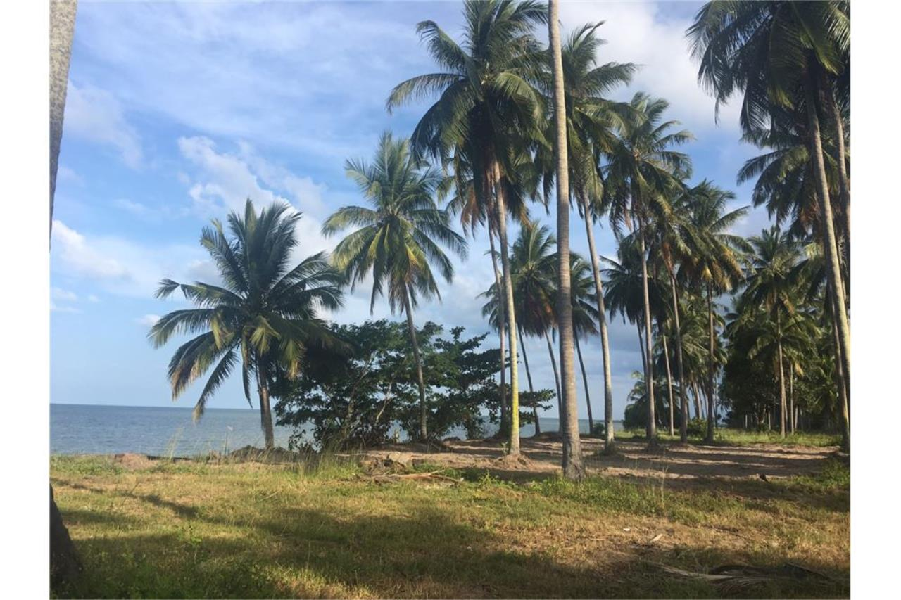 RE/MAX Island Real Estate Agency's Affordable beach land for sale in Tha Sala. 5
