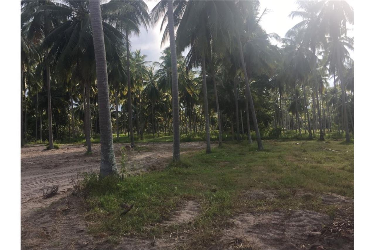RE/MAX Island Real Estate Agency's Affordable beach land for sale in Tha Sala. 11