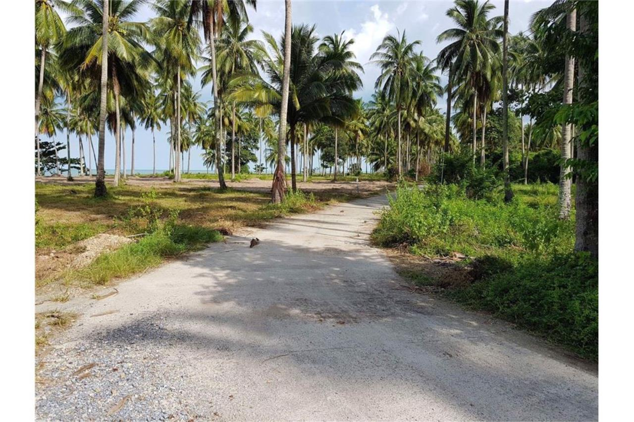 RE/MAX Island Real Estate Agency's Affordable beach land for sale in Tha Sala. 13