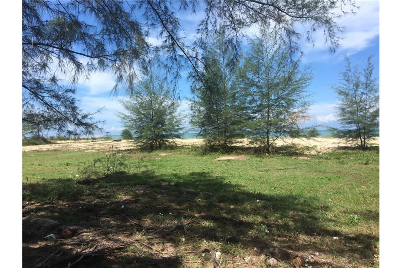RE/MAX Island Real Estate Agency's Beach land for sale in Tha Sala 7