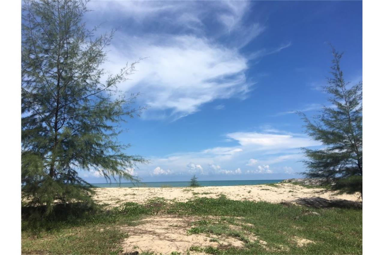 RE/MAX Island Real Estate Agency's Beach land for sale in Tha Sala 3