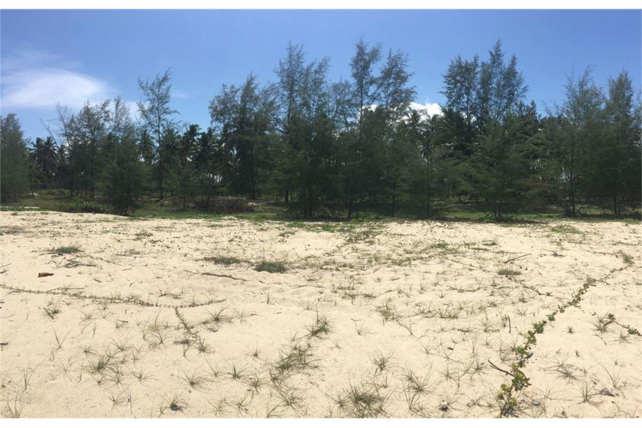 RE/MAX Island Real Estate Agency's Beach land for sale in Tha Sala 2