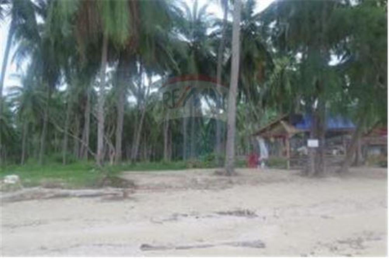 RE/MAX Island Real Estate Agency's 3 RAI BEACHLAND FOR SALE IN BANGPOR 7