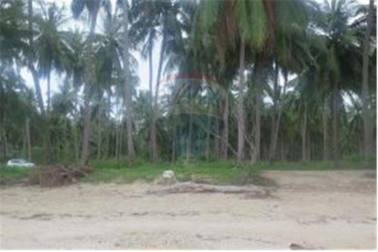 RE/MAX Island Real Estate Agency's 3 RAI BEACHLAND FOR SALE IN BANGPOR 4
