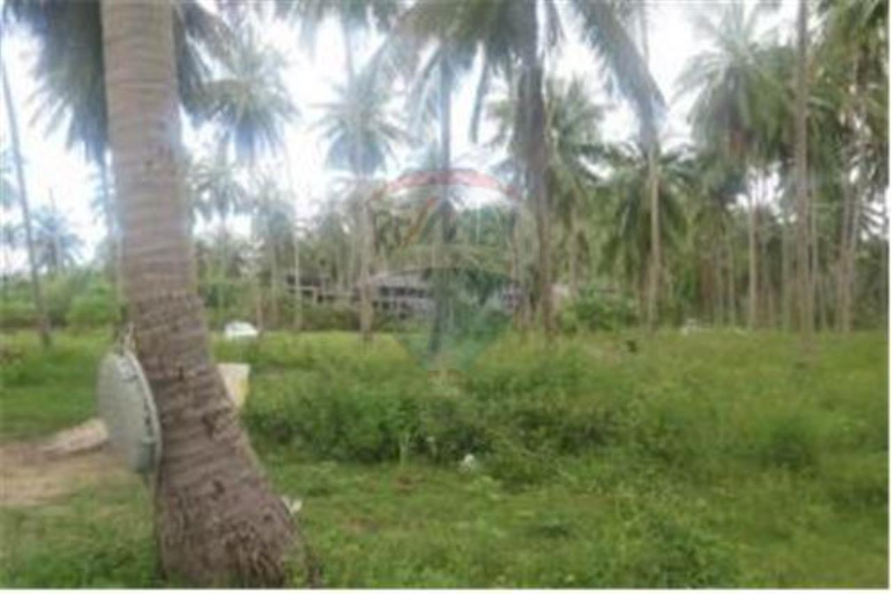 RE/MAX Island Real Estate Agency's 3 RAI BEACHLAND FOR SALE IN BANGPOR 9