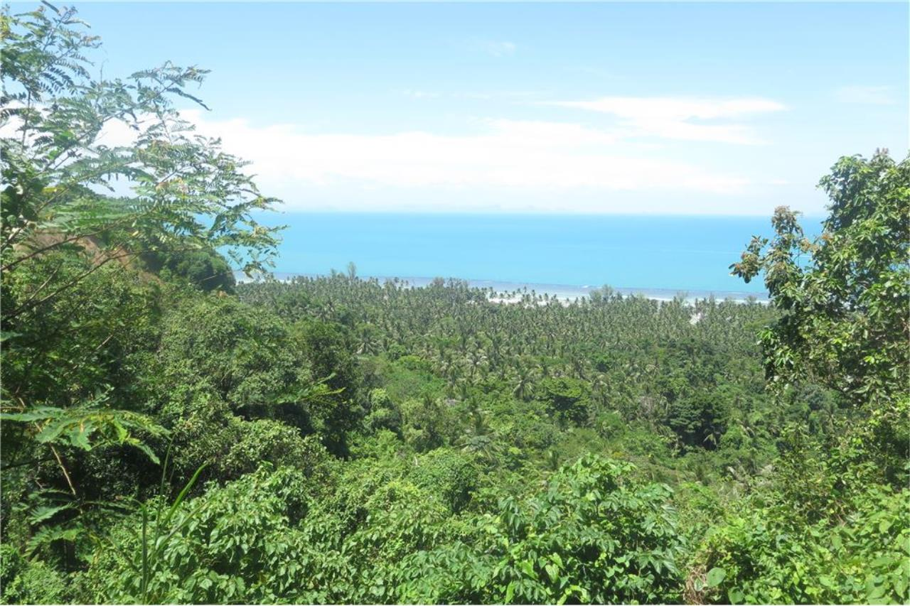 RE/MAX Island Real Estate Agency's Panoramic ocean view land for sale in Nathon 1