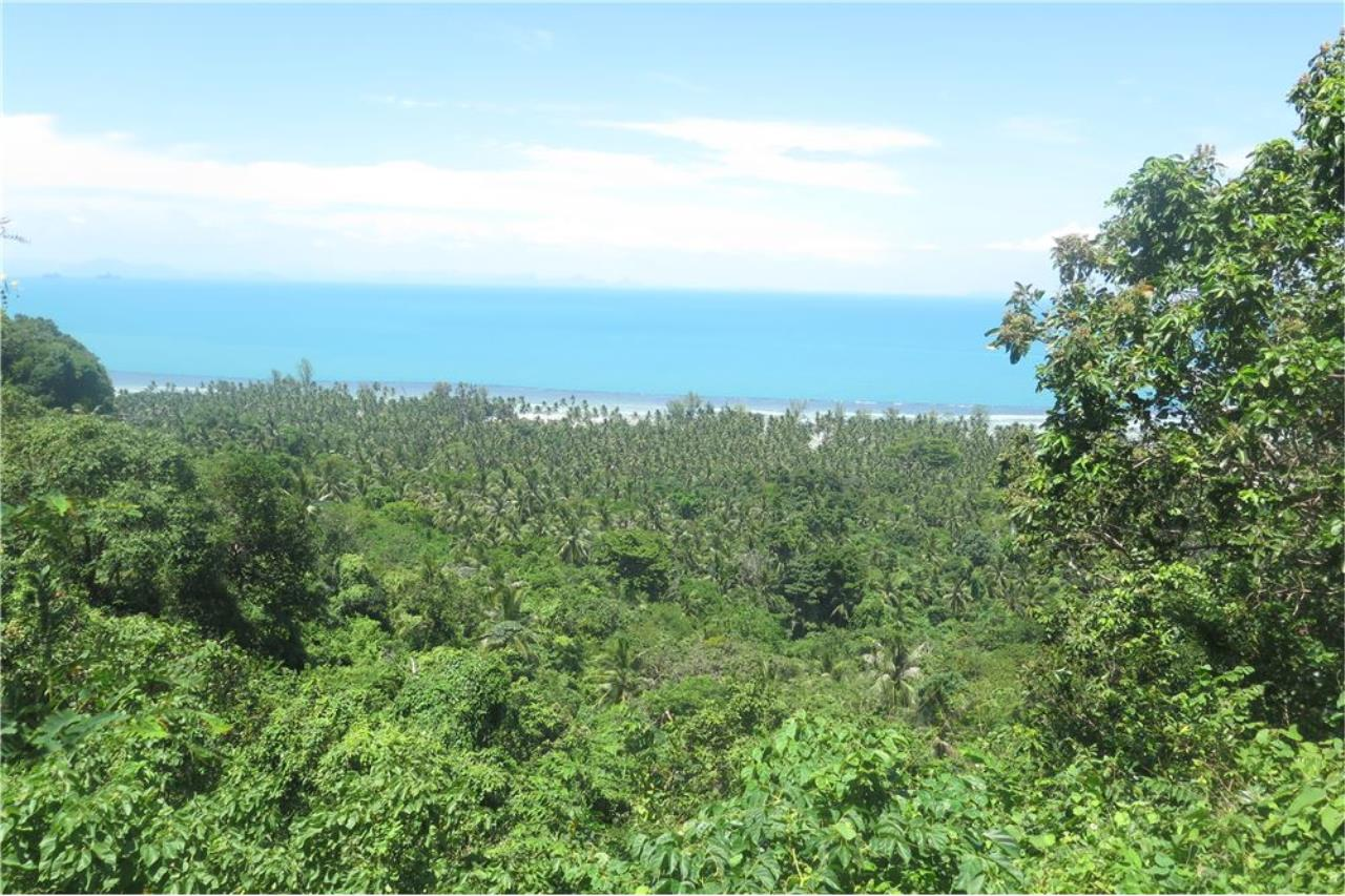 RE/MAX Island Real Estate Agency's Panoramic ocean view land for sale in Nathon 3