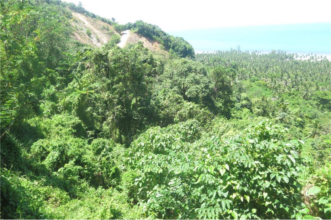 RE/MAX Island Real Estate Agency's Panoramic ocean view land for sale in Nathon 4