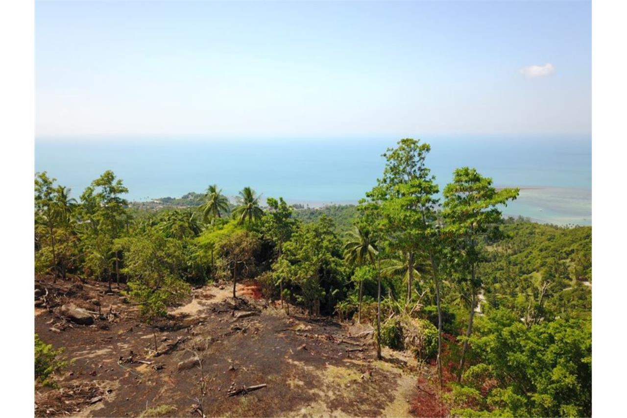 RE/MAX Island Real Estate Agency's 180 degrees sea view land for sale in Lamai 2