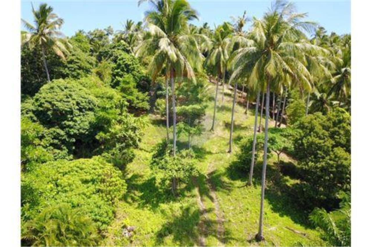 RE/MAX Island Real Estate Agency's 180 degrees sea view land for sale in Lamai 5