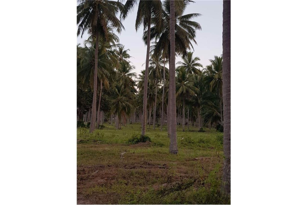 RE/MAX Island Real Estate Agency's Affordable beach land for sale in Tha Sala 13