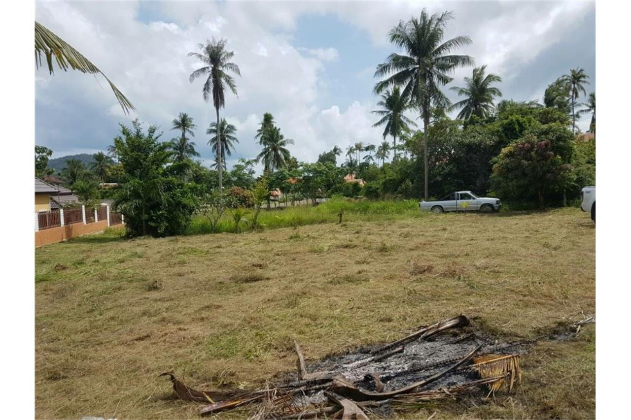 RE/MAX Island Real Estate Agency's Beautiful land close to the beach for sale in Bang 3